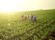 DuPont Pioneer – Walk With You